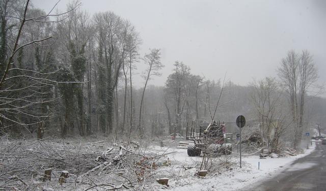 http://www.phorumursellis.de/images/TIZ-Hohemark-Parkplatz-Schnee.jpg